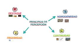 PRINCIPIOS DE PERCEPCIÓN