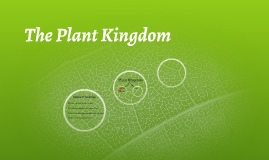 The Plant Kingdom