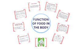 Copy of Function of Food in the Body