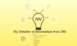 6.1: The Transfer of Information from DNA