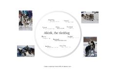 Akiak Character Traits