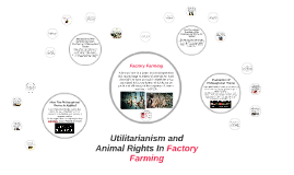 Utilitarianism and Animal Rights In Factory Farming