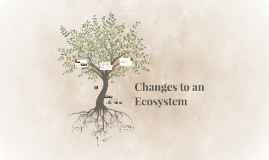 Changes to an Ecosystem
