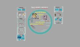 2017. Líquenes y micorrizas (T8) para Ambientales