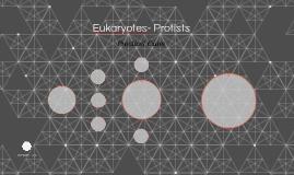 Eukaryotes- Protists