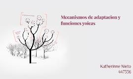 Copy of Mecanismos de adaptacion y funciones yoicas