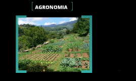 Copy of agronomia
