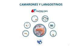 Copy of Pres. CAMARONES Y LANGOSTINOS