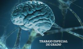 Copy of Copy of El cerebro humano