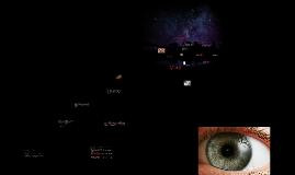 Identificación de la estructura y función del aparato visual