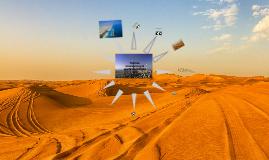 Copy of модель менеджмента ОАЭ