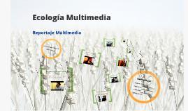 Ecología Multimedia