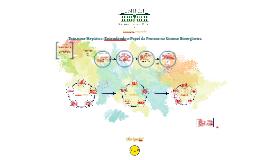 Esteatose Hepática: Ação da Frutose na Síntese Bio-Orgânica.
