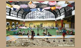 Copy of rascunho da cris 2012 / 2013