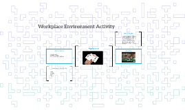 Workplace Environment Activity