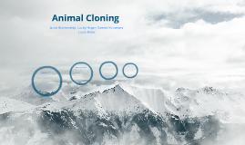 Animal Cloning