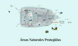 Areas Naturales Protegidas, servicios ambientales y tecnolog
