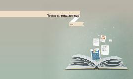 Team organisering