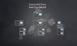 Success Unit Terms
