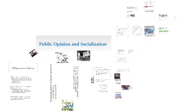Political Socialization and Divisions in Opinion