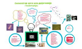 Copy of Силикатне алге