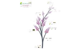 Copy of Proyecto Fortalecimiento Quinua - CMMC
