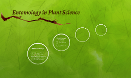 Entomology in Plant Science