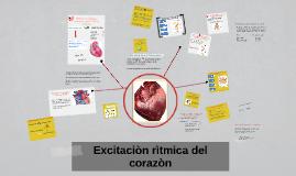 Excitaciòn rìtmica del corazòn