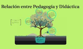 Relación  Pedagogía y Didáctica