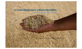La Crisis Alimentaria y Biocombustibles