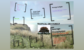 Copy of Copy of Tropical Dry Forest