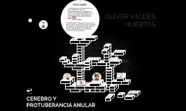 CEREBRO Y PROTUBERANCIA ANULAR