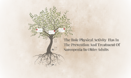 Physical Activity In the 65+