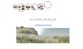 Copy of tarımsal peyzaj