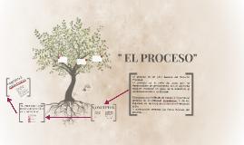 """"""" EL PROCESO"""""""