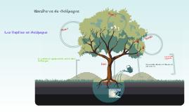Mamíferos de Galápagos,los Reptiles en Galápagos y la actividad  agropecuaria en las islas Galapagos
