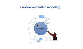 tendon modelling - review