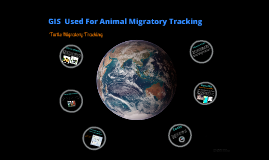 ANIMAL TRACKING IN A GIS