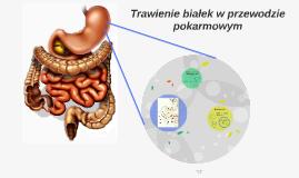 Trawienie białek w przewodzie pokarmowym