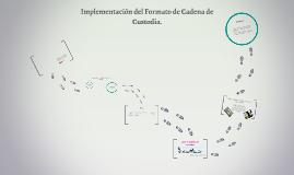 Implementación del Formato de Cadena de Custodia.