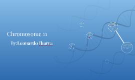 Chromosome 11