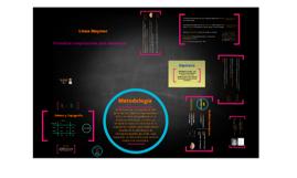 Copy of Verano de Investigacion 2013