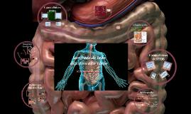 Copy of Sangrado de tubo digestivo
