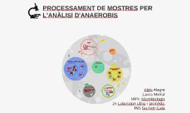 Copy of PROCESSAMENT DE MOSTRES PER L'ANÀLISI D'ANAEROBIS