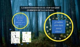 LA BIODIVERSIDAD EN EL CEIP SAN JOSÉ (TORREJÓN DE LA CALZADA