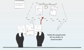 Modos de organización
