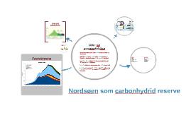 Nordsøen som carbonhydrid reserve