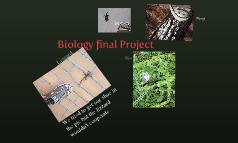 Biology final Project