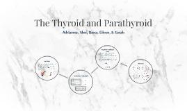 The Thyroid and Parathyroid