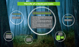 Life of a Medicaid Claim
